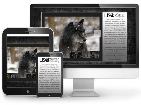 Website Design: Lisa Warren Photography